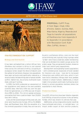 IFAW CITES Briefing Sheet - African Lion